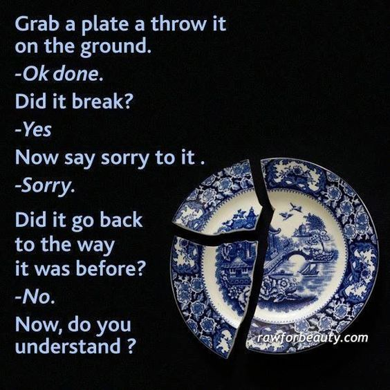 Image result for cracked plate meaning, sorry