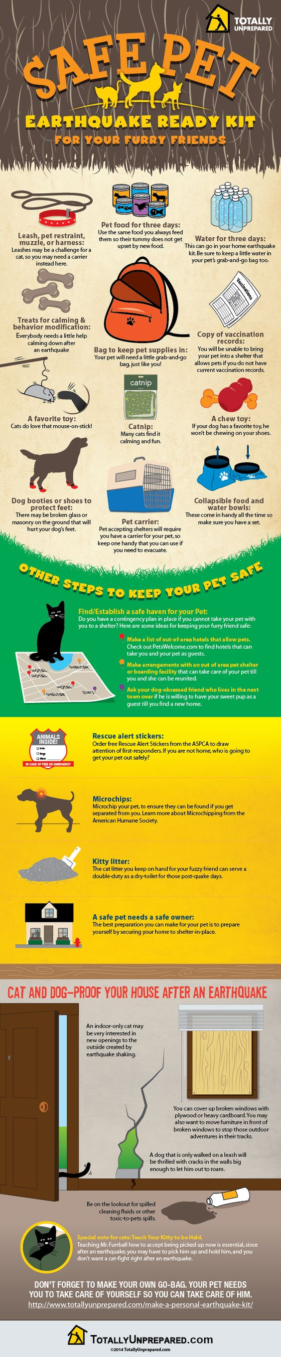 Safe pet earthquake kit be informed pinterest editor for Where do you go in an earthquake