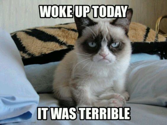 Awwwww..poor grumpy...go back to bed.
