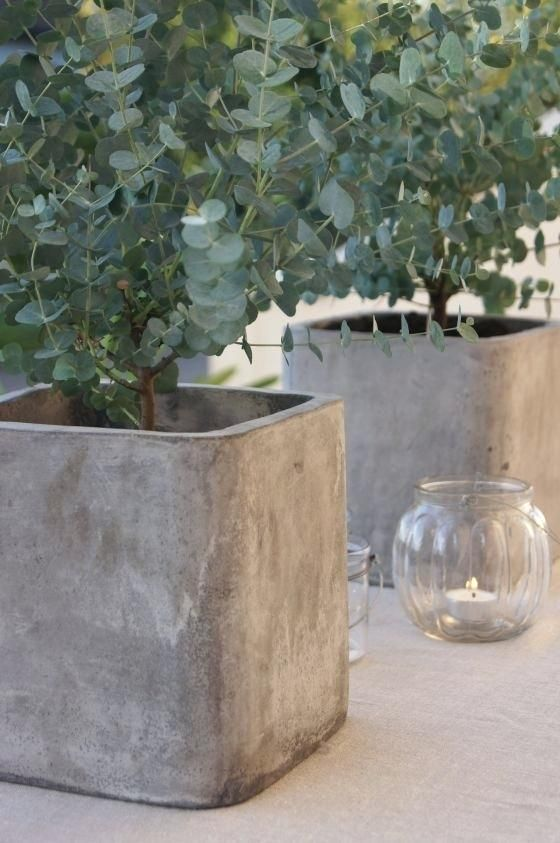 Diy Large Round Concrete Planters Pretty Square Concrete Planters Use Square Buckets As Molds Diy Cement Planters Diy Concrete Planters Large Concrete Planters