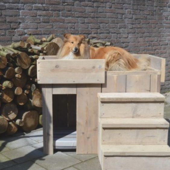 Leuk hondenhok! van steigerhout!  Geknipt van hippehondenhokken