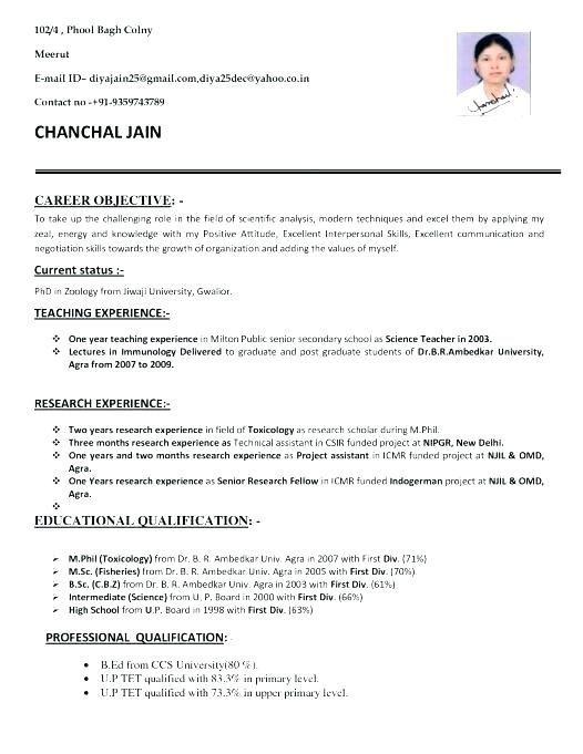 Resume Format For Bsc Zoology Resume Format Teacher Resume Template Teaching Resume Jobs For Teachers