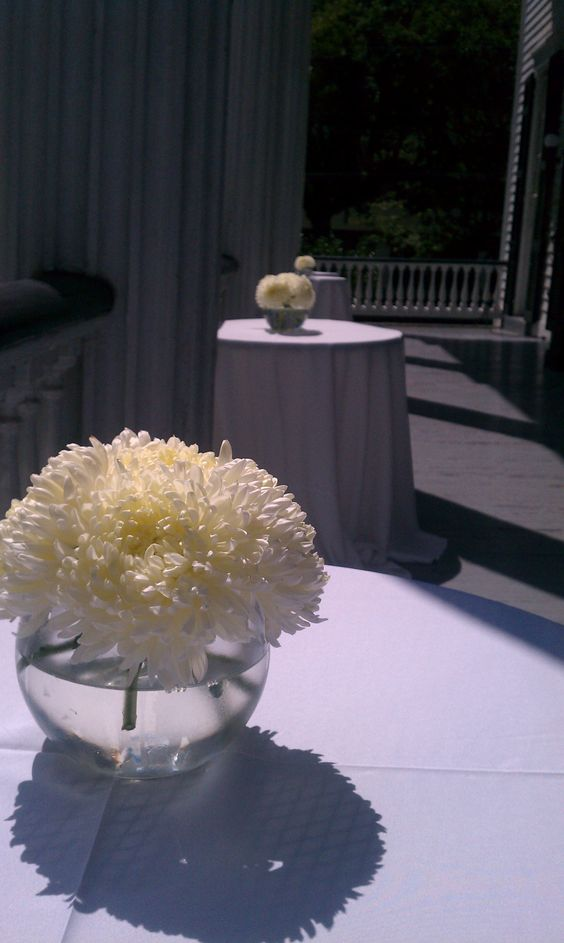 White football mums centerpiece catoctin affair