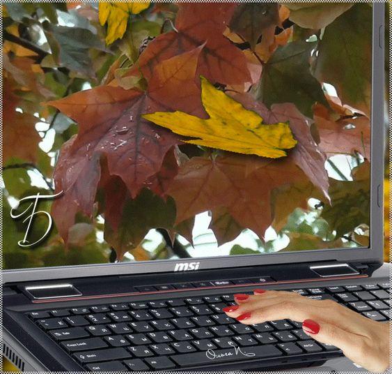 foglie Animazione autunno cadono dallo schermo del monitor alla tastiera, che ha la mano di una donna con smalto rosso, iscrizione Wanders cadono come l'autore Olga P, foglie SIFCO autunno cadono dallo schermo alla tastiera, che ha la mano di una donna con smalto rosso, Rove iscrizione Autunno come l'autore Olga P
