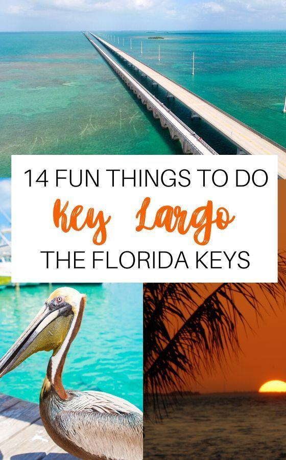 Christmas Activities Near Me Largo Florida 2020 Mountain biking #florida #things florida keys things to do kids