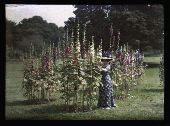 Autochrome anonyme, femme et fleurs, Circa 1910 - Antiq Photo - Photographies - [( 04. Autochromes|supprimer_numero)] - Achat, vente et estimation gratuite d'appareils photos anciens, de photographies de collection et de daguerréotypes.