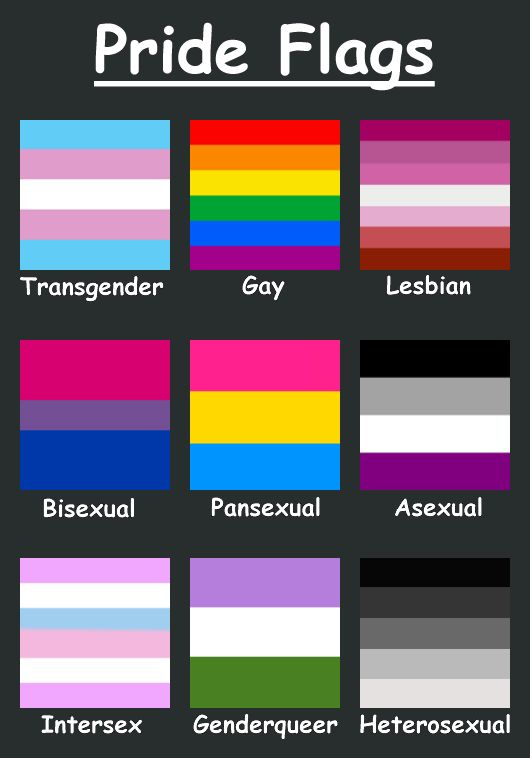 Here's just a few pride flags. There are soooo many sexualities and genders besides this: demisexual, agender, polysexual, and gender fluid just to name a few. It's a spectrum, not a few choices.