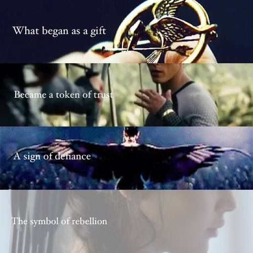 The Mockingjay ❤️