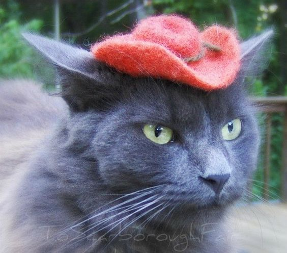 Cowboy Cat Hat   Chestnut Brown by ToScarboroughFair on Etsy, $27.00