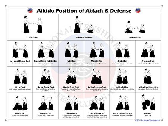 Should I take Aikido or Kendo?