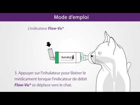 Chambre D Inhalation Feline Aerokat Mode D 039 Emploi En 2020 Mode D Emploi Emploi Mode