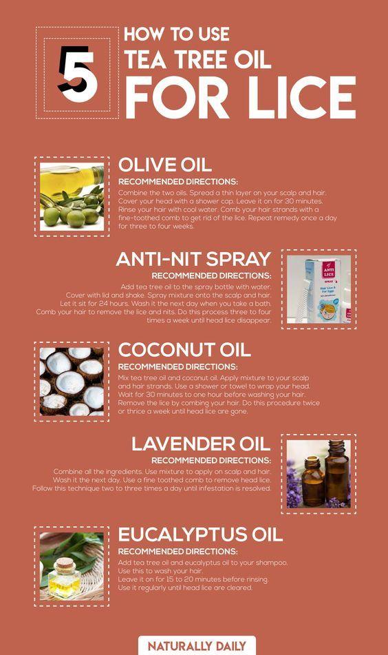 84f476c2c00294c123b25fa9aad0434b - How To Get Rid Of Lice Using Tea Tree Oil