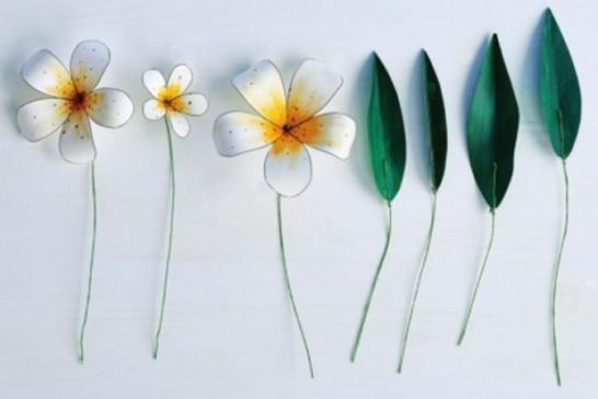 Step-by-steps for making 3D paper flowers
