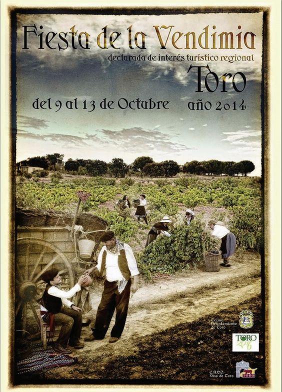 El periodista Juanma de Saá pregonará la fiesta de la vendimia de Toro https://www.vinetur.com/2014100716952/el-periodista-juanma-de-saa-pregonara-la-fiesta-de-la-vendimia-de-toro.html