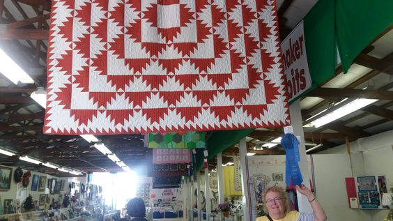 Mom's quilt won 1st and best of show at Armada fair!