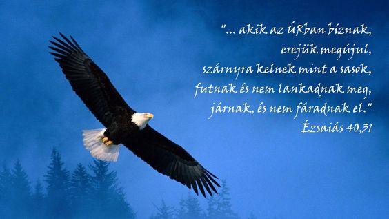 akik az Úrban bíznak...