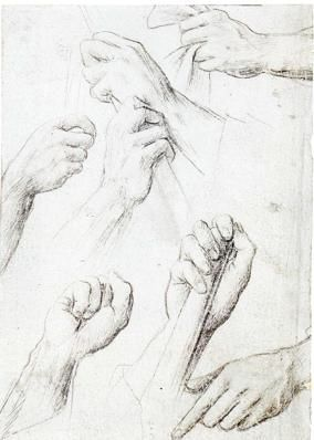 Hans Holbein the Elder,    Study Sheet with Seven Hands,    ca. 1502.    Silverpoint on blue-gray prepared paper,    14.1 x 10.0 cm.