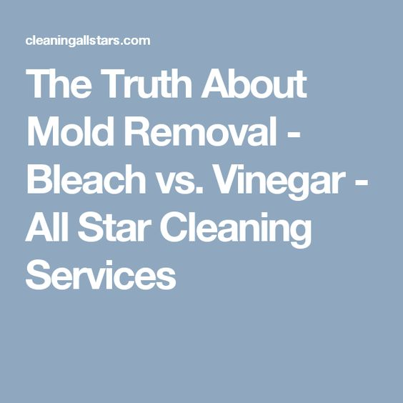 the truth about mold removal bleach vs vinegar all star cleaning services cleaning tips. Black Bedroom Furniture Sets. Home Design Ideas