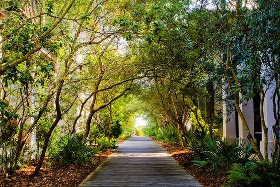 Rosemary Beach Florida...I want a walkway like this