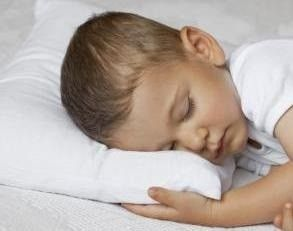 """Set of 2 - Premium Quality-Toddler Pillow -Soft Hypoallergenic 13""""x18""""-100% Cotton Cover- for ages 2+"""