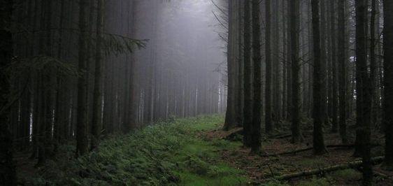 """Relato Sobrenatural: Recantos Escuros da Terra: Fenômeno """"Triângulo das..."""