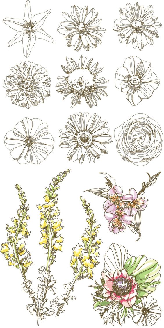 May be helpful for my flowers watercolour for Christine