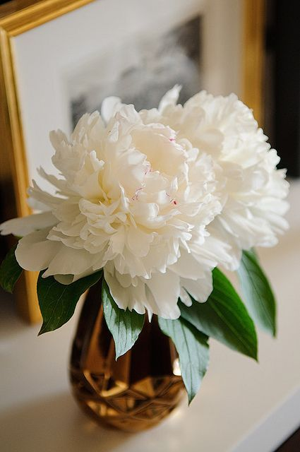 White Peonies...see why I love them? They look ruffly!