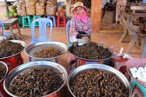 Các món ăn từ côn trùng đã được xếp vào top 10 món ngon của Campuchia