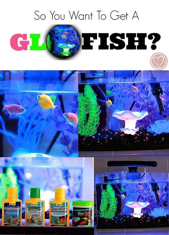Pinterest the world s catalog of ideas for Walmart fish tank decorations