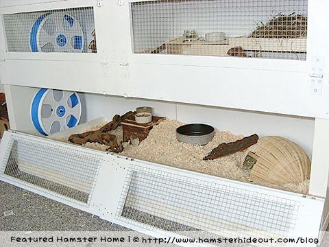 Made from ikea bookshelf expedit diy hamster habitat for Ikea hamster cage