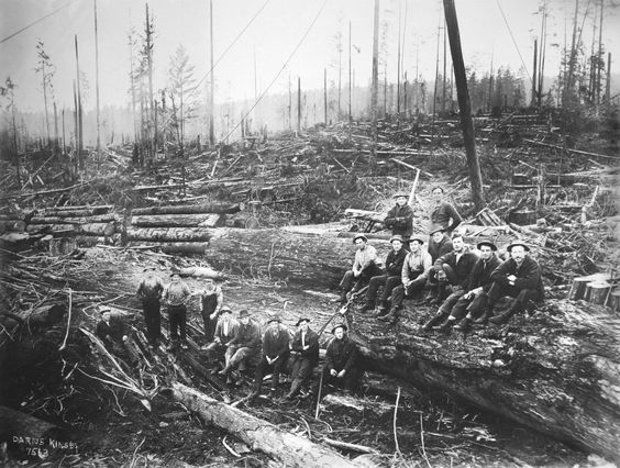 explore logging... Logging Camp History