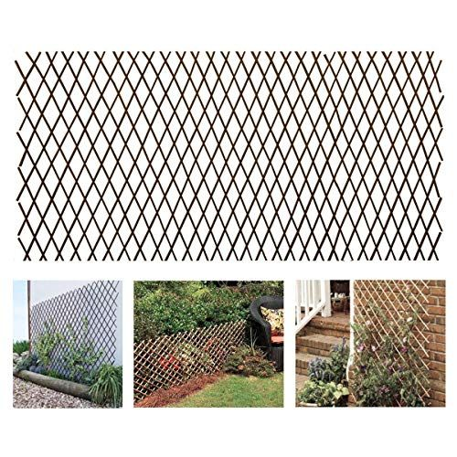93 To Buy 3 2 Stacked One Under Girls Window Melchef Nature Willow Expandable Plant Climbing Lattices Trellis Fence Climbing Plants Fence Fence Plants