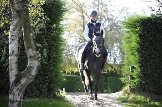 William and Pippa Funnell share their experience and advice for breaking and producing young horses in June issue of H #equestrian #younghorses