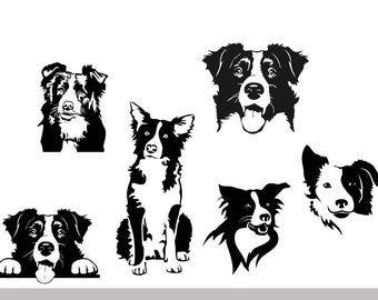 Vector Dog Border Collie Ai Png Pdf Eps Svg Dxf Jpg Etsy Border Collie Border Collie Dog Drawing Borders