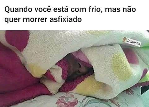 Frio Dormir Cama Cobertor Humor Engracado Amigo Memes Memes Engracados Meme Engracado