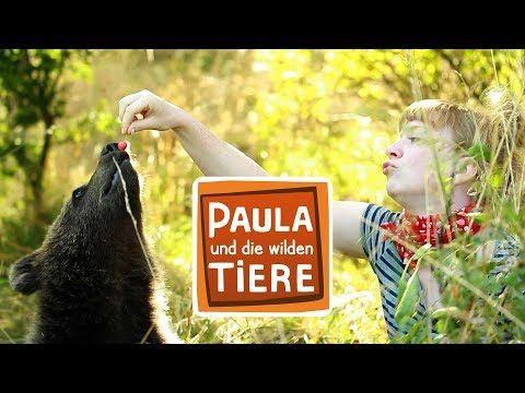 Barengeschwister Barenhunger Doku Reportage Fur Kinder Paulas Barenabenteuer Teil 4 5 Youtube