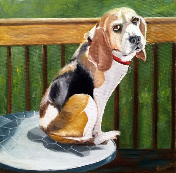 """Rosie the Beagle"" (SOLD) 10"" x 10"" Oil on Canvas"