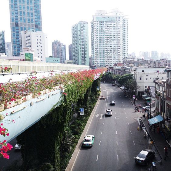 I'm really lucky to live in this city. Small. Green. Warm. Clean. Modern.  And it an island! It's not absolutely Chinese and not European either.  Something in the middle. This mixture created a unique lifestyle which I try to explore every single day!  #iliveinchina #xiamen #xiamenstreets #brt #greencity #china #Chinese #citystreet #island #mylife