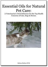Essential Oils For Natural Pet Care A Veterinarian S