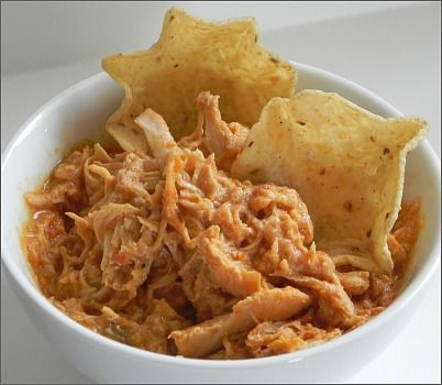 Salsa Chicken....our NEW favorite.  Amazing on nachos, or rolled into tortilla wraps, and kids LOVE it!!