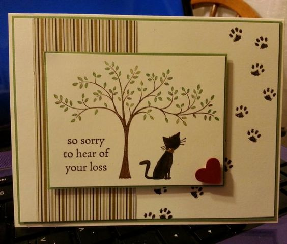 Kitty Sympathy DIM 8-21-2014 by jdmeeks - Cards and Paper Crafts at Splitcoaststampers