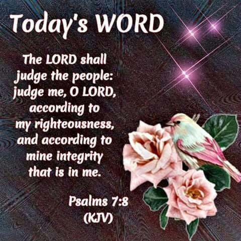 Psalm 7:8