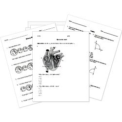 Printables K-12 Worksheets free printable activities and equation on pinterest k 12 worksheets from helpteaching com math ela science