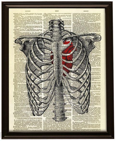 Rib Cage Diagram With Heart : diagram, heart, Human, Heart, Inside, Dictionary, Print, Print,, Prints,