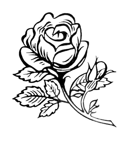 Ready To Use Floral Spot Illustrations Copyright Free Designs Printed One Side Hundreds Of Uses Bernath Stefen Free Download Borrow And Streaming I Rose Coloring Pages Flower Coloring Pages