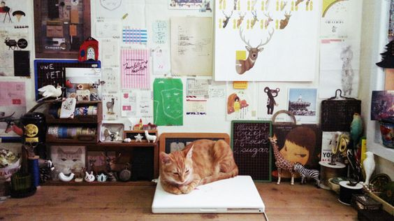 cats on computers  by o l y, via Flickr