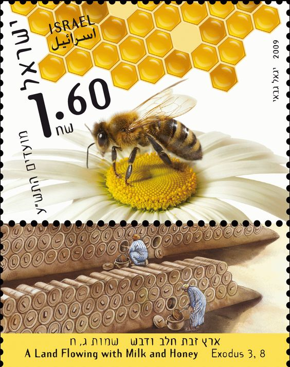 SELLO POSTAL CON ABEJA DE LA MIEL - POSTCARD WITH HONEY BEE.