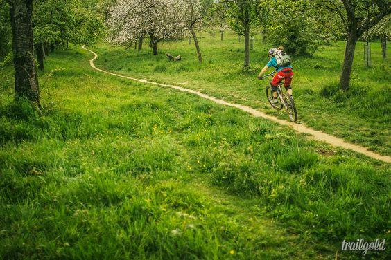 Trail gold