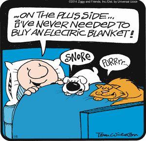 Ziggy Comic Strip, January 06, 2014 on GoComics.com: