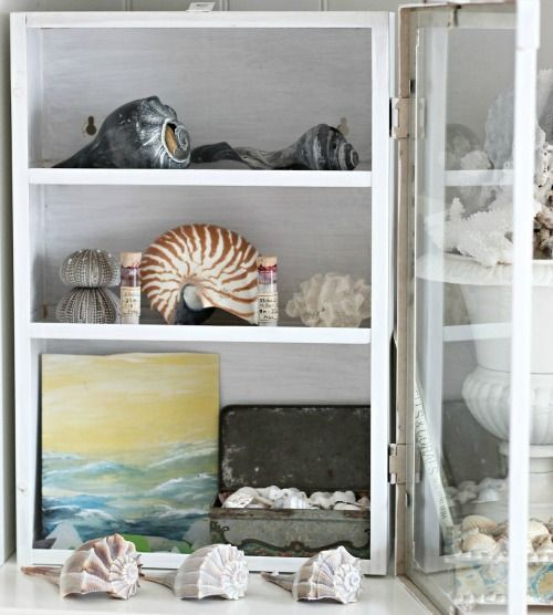 Seashell display ideas for the beachcomber http www for Ideas for displaying seashells